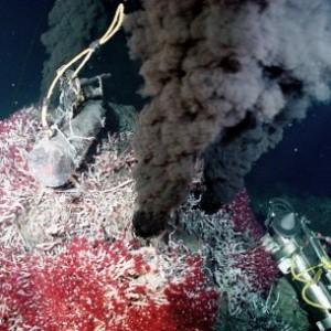 Une source hydrothermale dans la fosse des Caïmans, à - 5000 m (source : ASP)